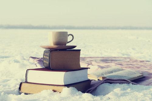 snowbook.jpg