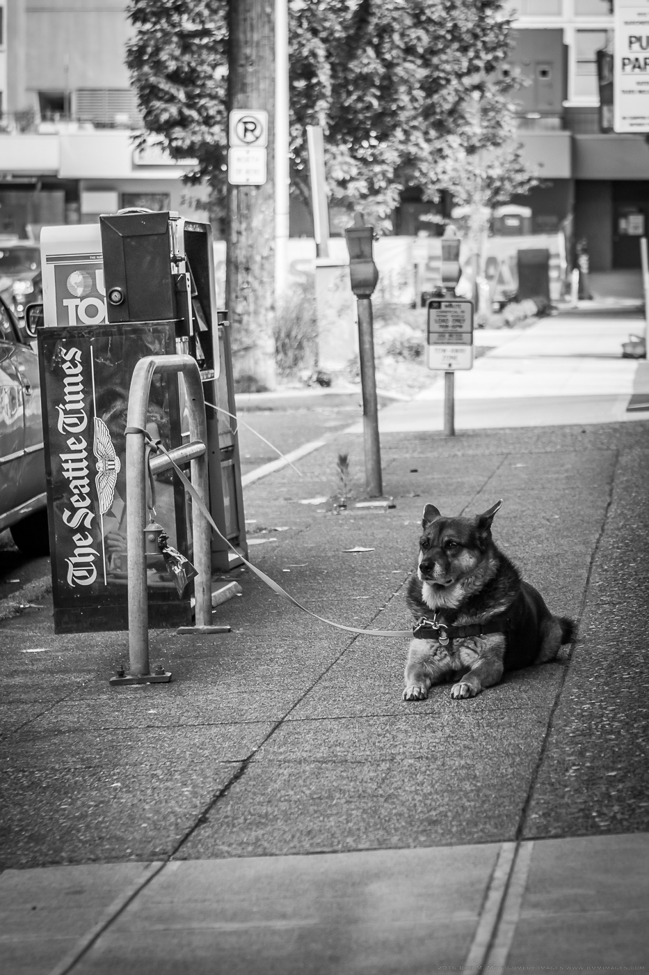 Seattle Random  - 0003.jpg