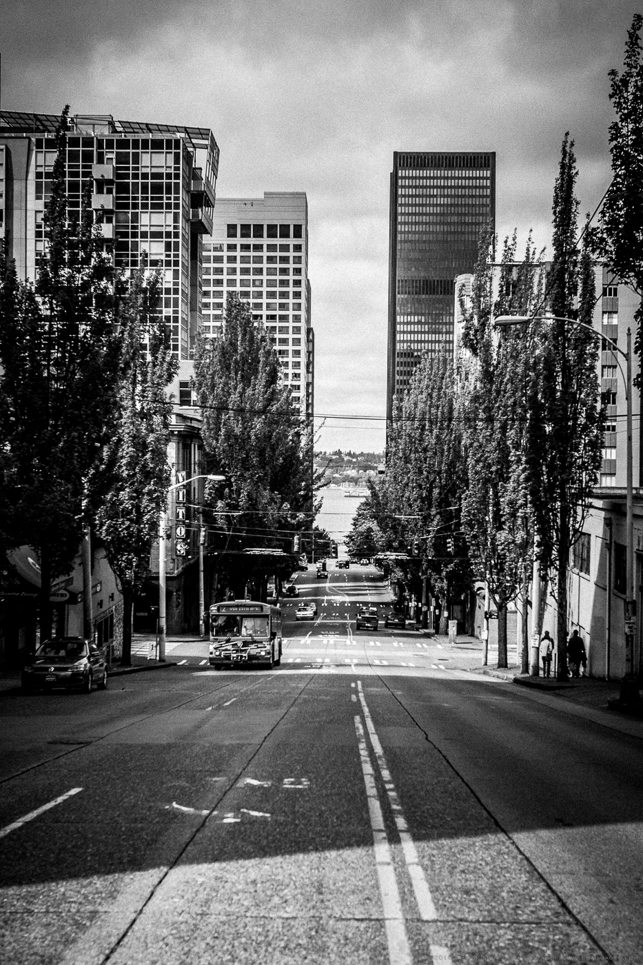 Seattle Random  - 0005.jpg