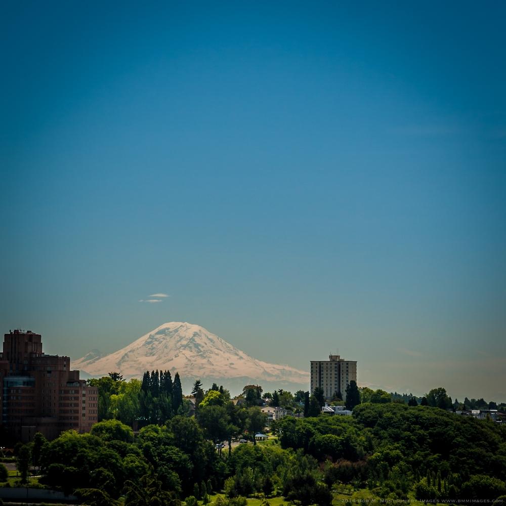 Seattle Random  - 0065.jpg