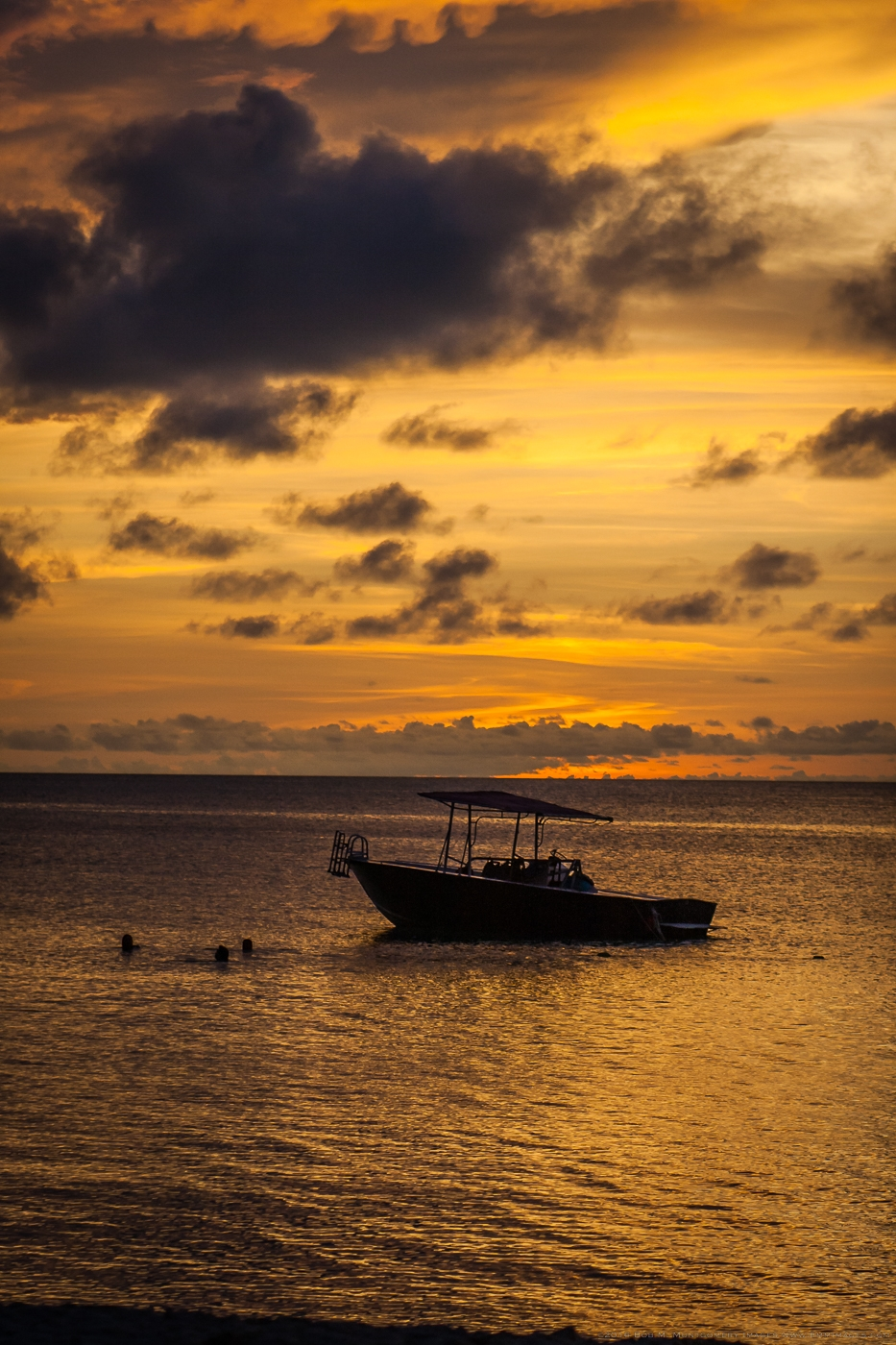 Aruba 20120506 - 0043-2.jpg