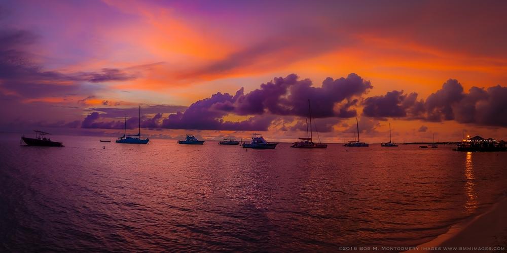 Aruba 20120507 - 0083.jpg