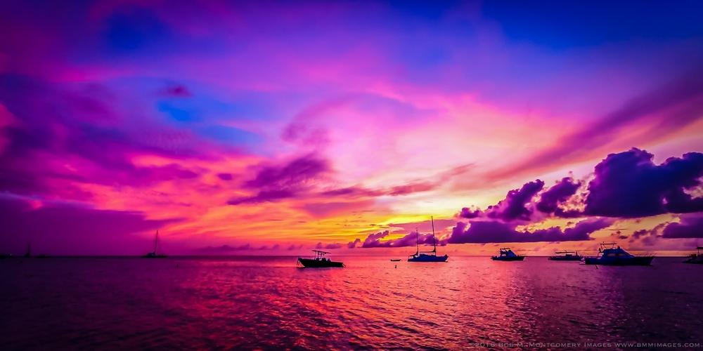 Aruba 20120507 - 0085.jpg