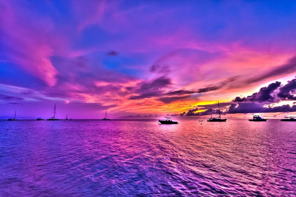 Aruba 20120507 - 0084.jpg
