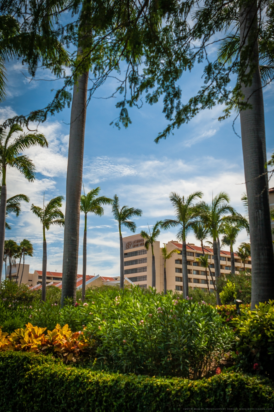Aruba 20120504 - 0009.jpg