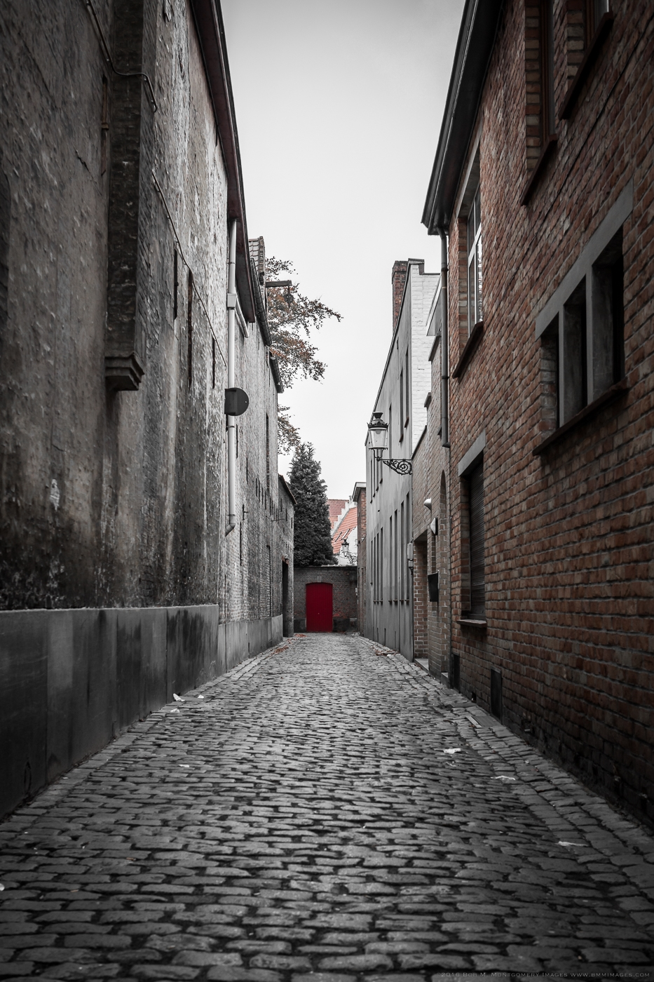 Belgium 20121104 - 0030.jpg