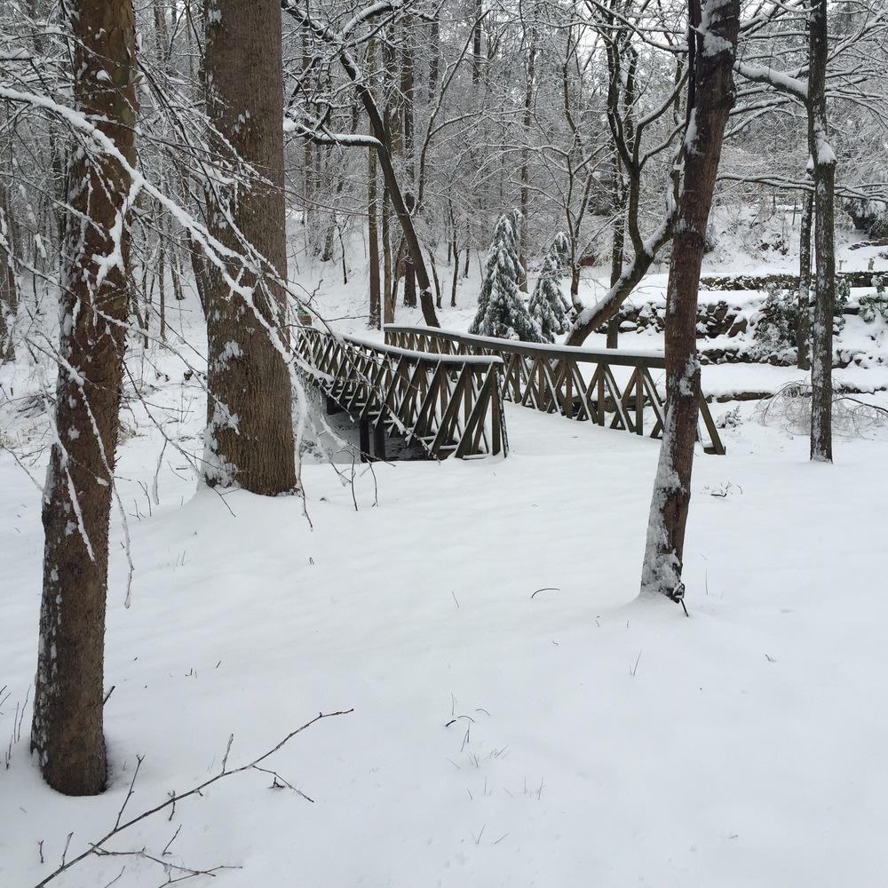 EC Park bridge SNOW.jpg