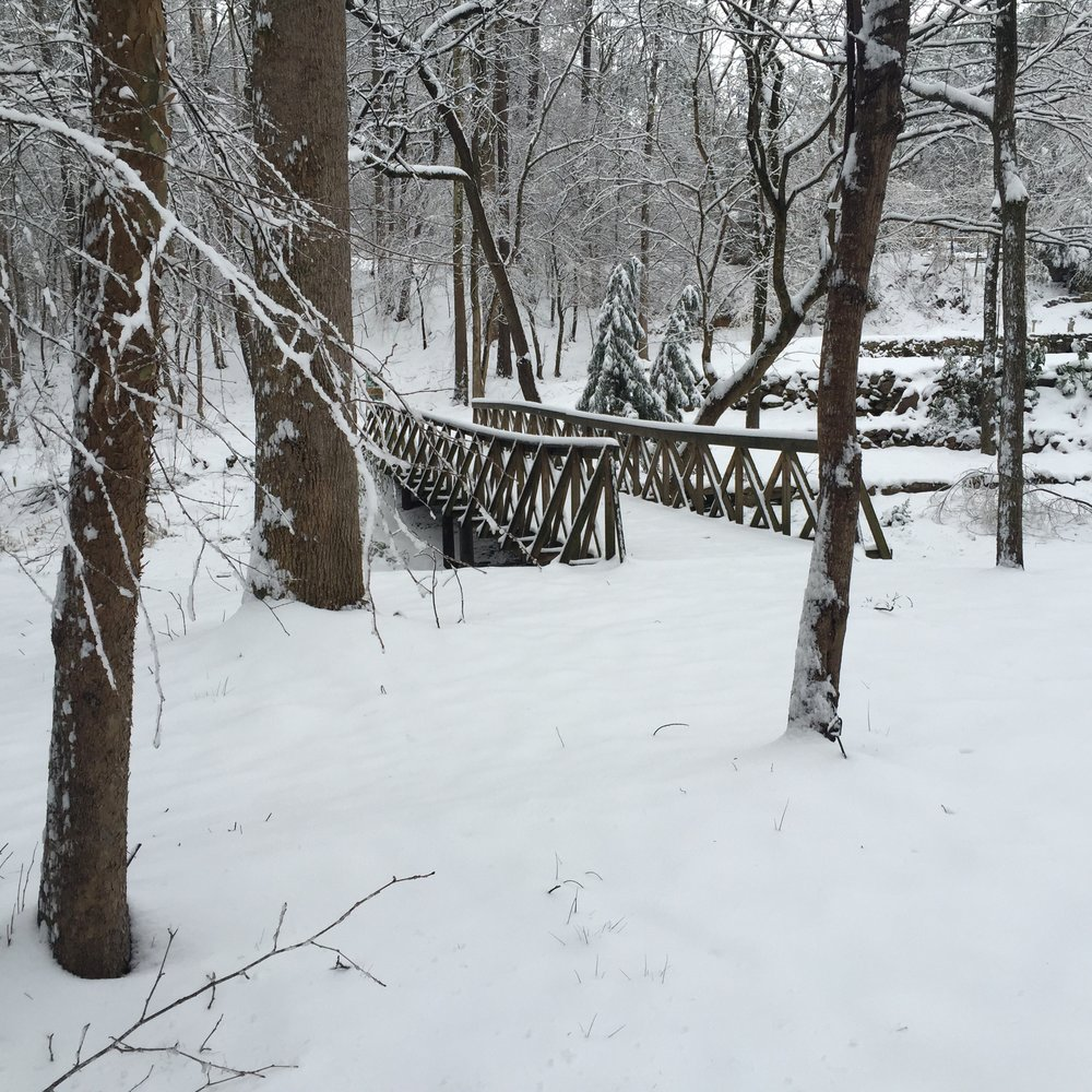 EC Park bridge SNOW.jpg