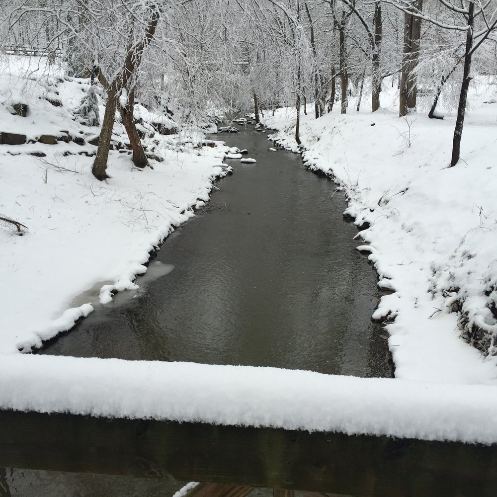EC Park stream in the snow.jpg