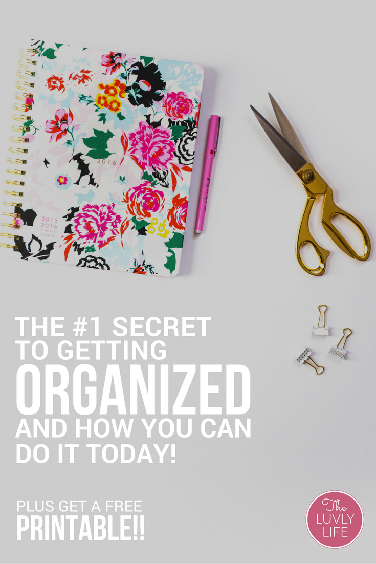 Sick of feeling like you're flying by the seat of your pants? Getting organized isn't as hard as it sounds with a plan behind it. If you're feeling frazzled & want to get the most out of your next day, click through to read about & download a FREE copy of the carpe diem printable daily planner page.