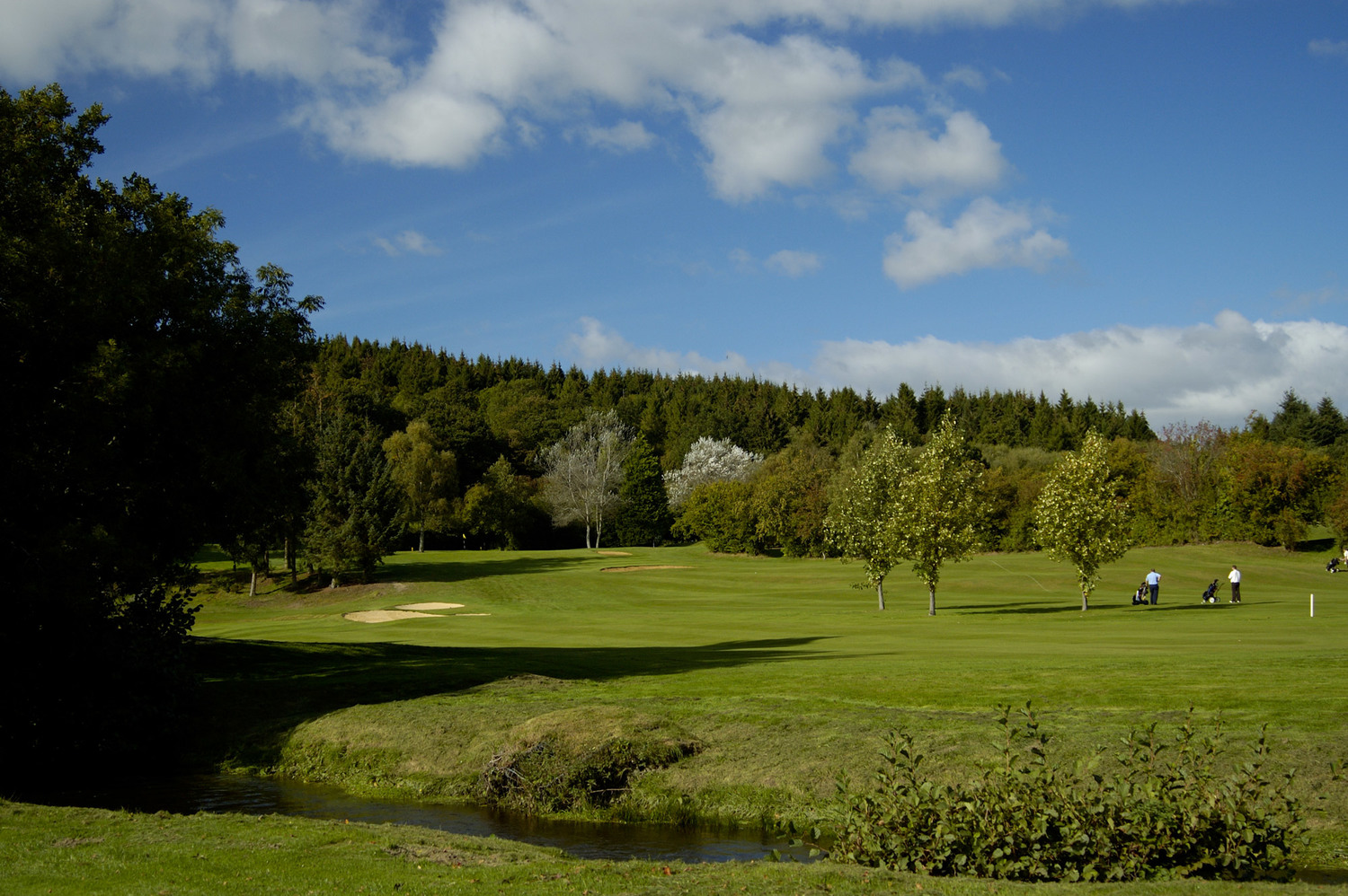 Image result for builth wells golf club