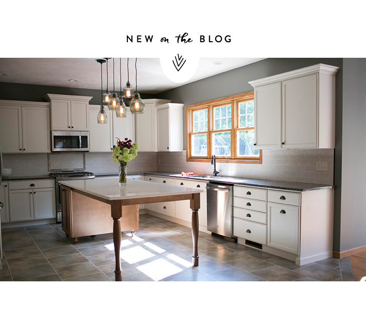becky-hoschek-photography-illinois-newborn-photographer-bloomington-normal-peoria-farmhouse-kitchen-remodel.jpg