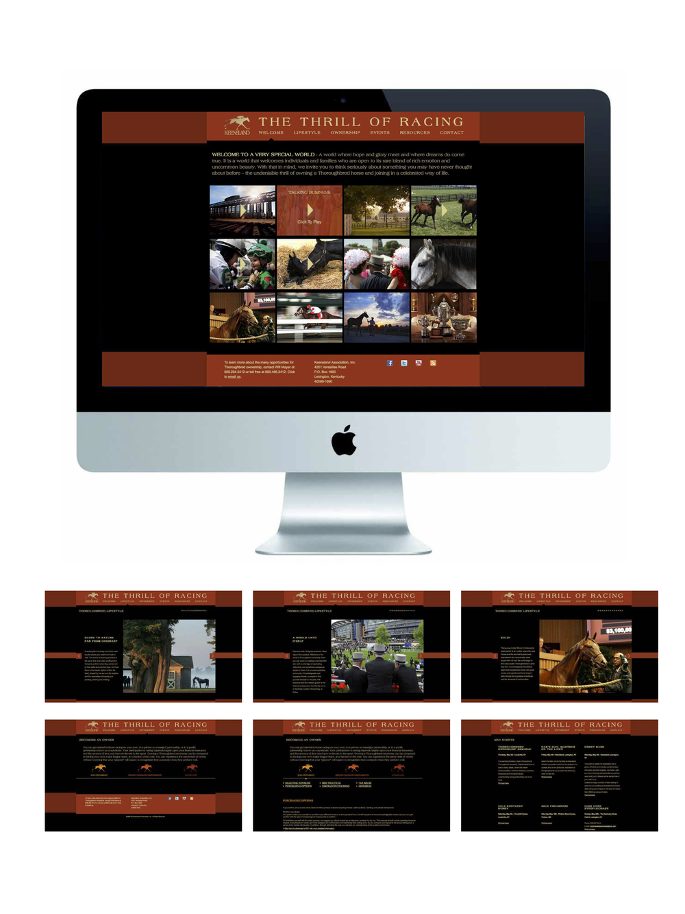 website and screens.jpg
