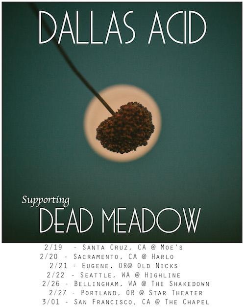 dead meadow tour flyer insta size x 500.jpeg
