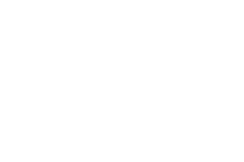 WINNER BEST INTERNATIONAL SHORT - Frostbiter Icelandic Horror Film Festival - 2017.png