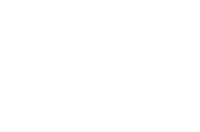 WINNER BEST CINEMATOGRAPHY - BRADFORD LIPSON PLATINUM AWARD - Los Angeles Horror Competition  - Summer 2017.png