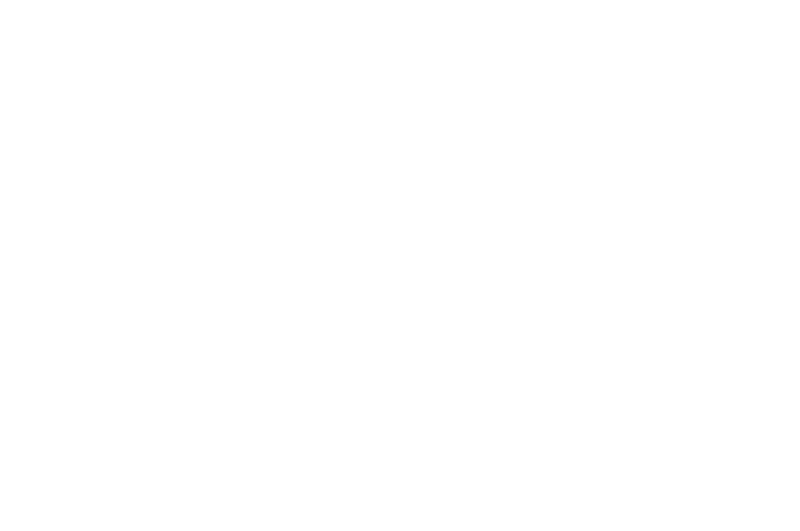 OFFICIAL SELECTION - Razor Reel - 2017.png