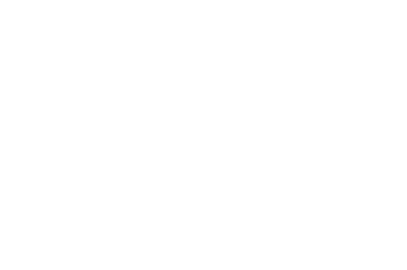 OFFICIAL SELECTION - Fantasia International Film Festival - 2017.png
