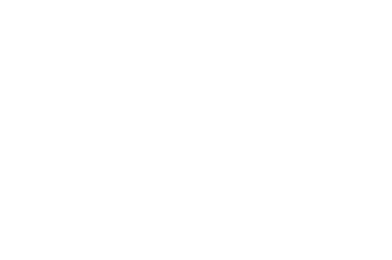 OFFICIAL SELECTION - 48 Independent Short Film Festival - 2018.png