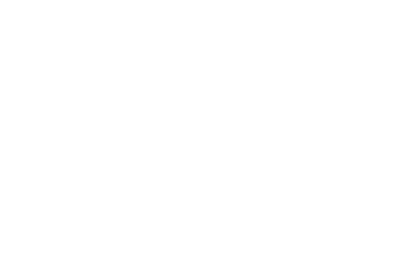 OFFICIAL SELECTION - Buried Alive FIlm Festival - 2016.png