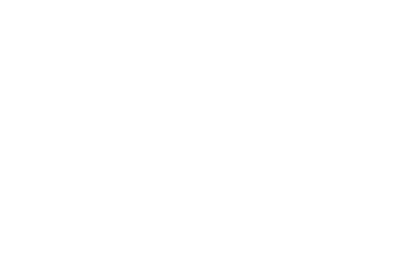 OFFICIAL SELECTION - Chicago Horror Film Festival - 2016.png