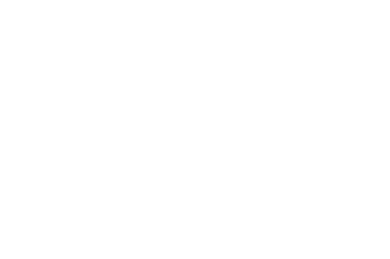 OFFICIAL SELECTION - Milwaukee Twisted Dreams Film Festival - 2017.png