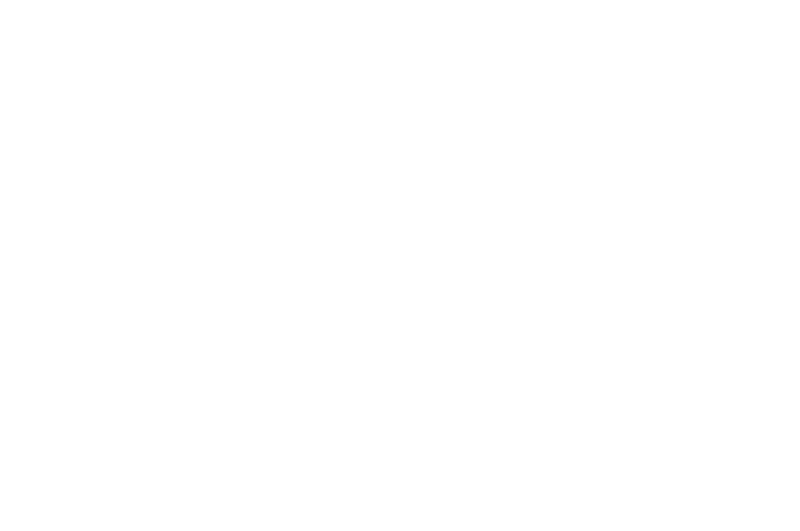 OFFICIAL SELECTION - Bram Stoker International Film Festival - 2016.png
