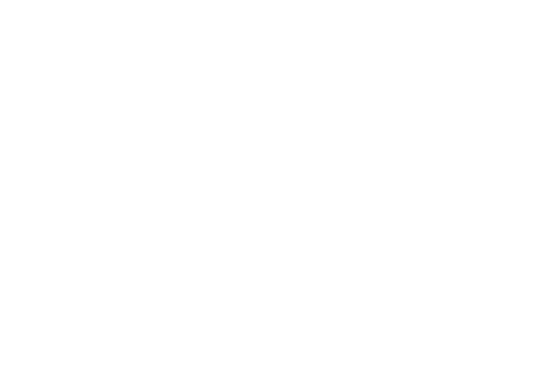 OFFICIAL SELECTION - New Jersey Horror Con and Film Festival - 2017.png