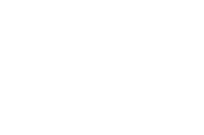 OFFICIAL SELECTION - International Horror  Sci-Fi Film Festival - 2017.png