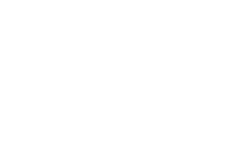 OFFICIAL SELECTION - FANtastic Horror Film Festival - 2017.png