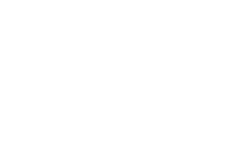 OFFICIAL SELECTION - Las Vegas Film Festival - 2017.png
