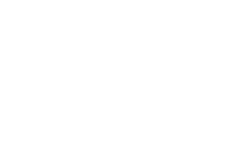 OFFICIAL SELECTION - Woods Hole Film Festival - 2017.png