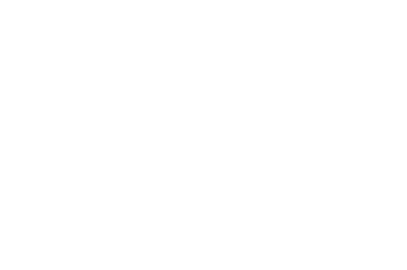 OFFICIAL SELECTION - Spotlight Horror Film Awards - 2017.png