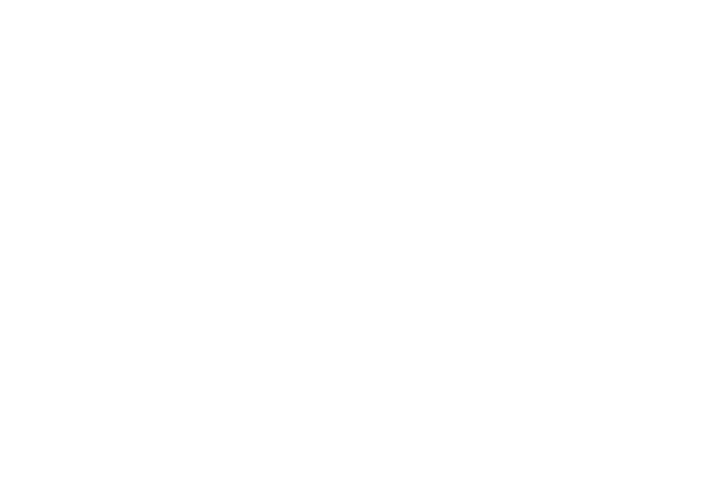 OFFICIAL SELECTION - 18th Kansas International Film Festival - 2017.png