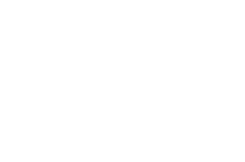 OFFICIAL SELECTION - Nevermore Film Festival - 2018.png
