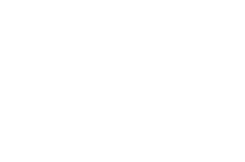 OFFICIAL SELECTION - Anatomy Crime - Horror International Film Festival - 2017.png