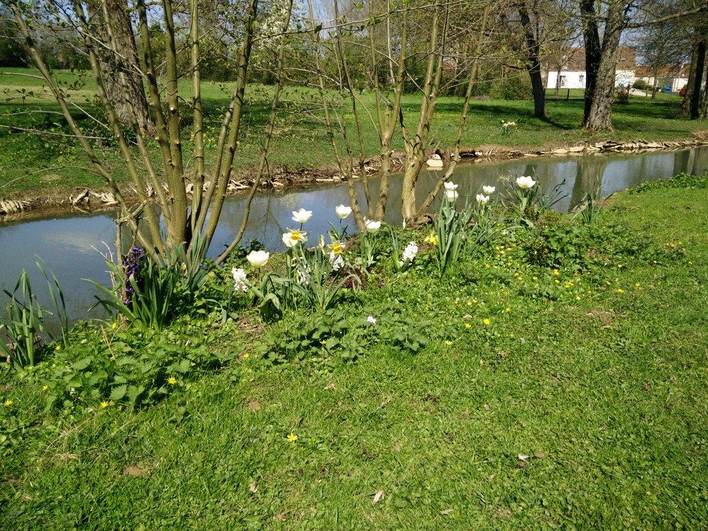 La Barbotière - le jardin et le ruisseau