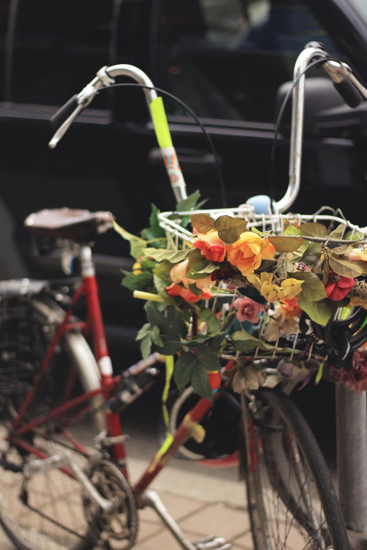 toronto bike handlebars flowers ossington