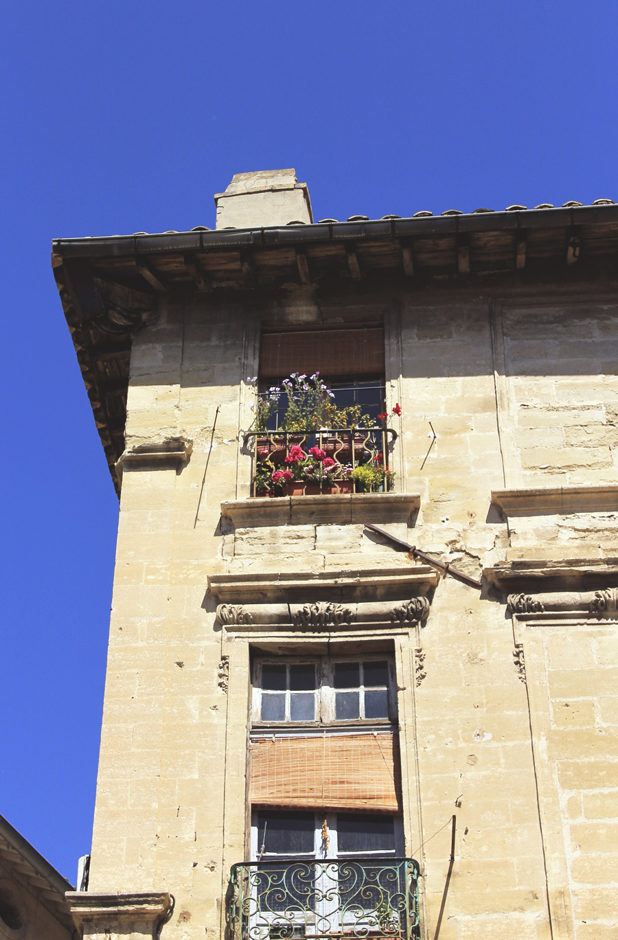 avignon windowsill window garden flowers