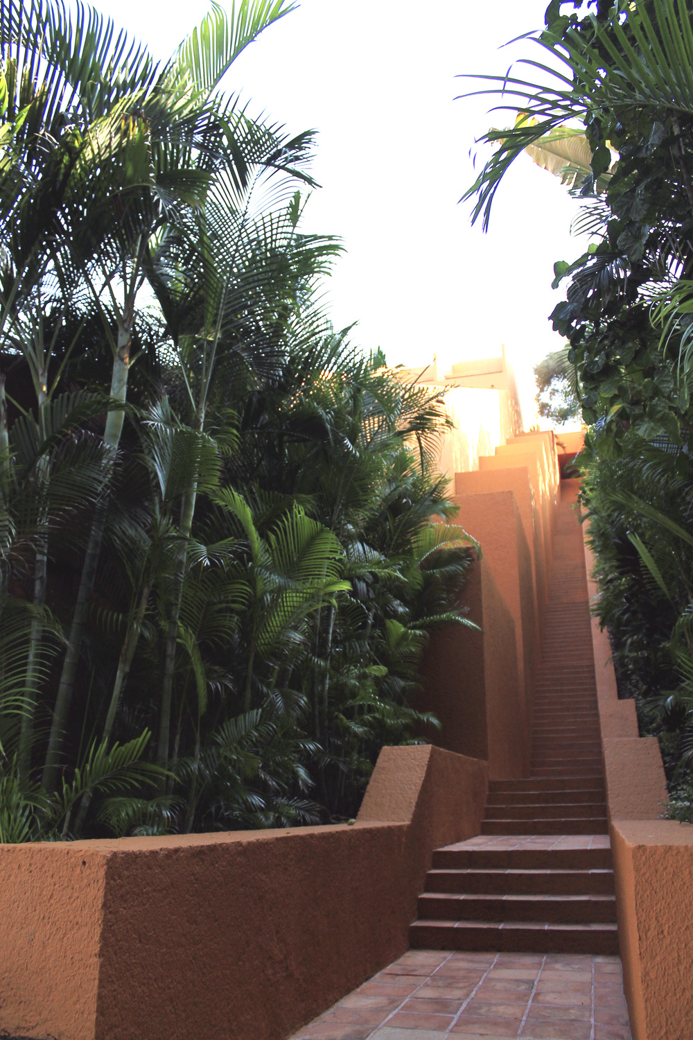architectural stairs mexico ixtapa palm trees