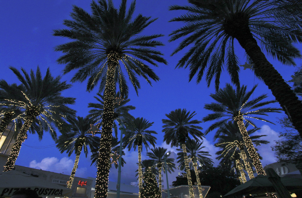 miami lincoln road palm trees lights.jpg