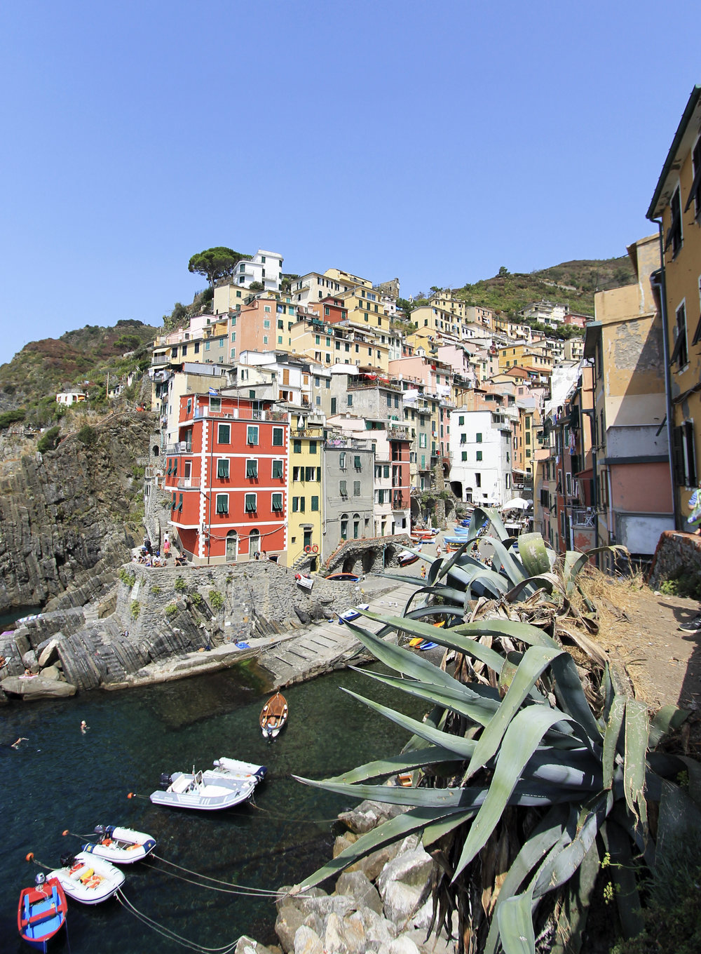 riomaggiore italy cinque terre buildings view harbor boats.jpg
