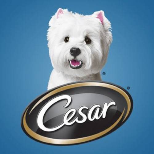 Cesar Logo | Dog Food Nassau County