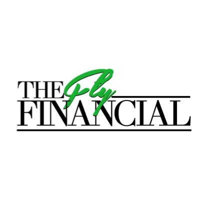 the fly financial