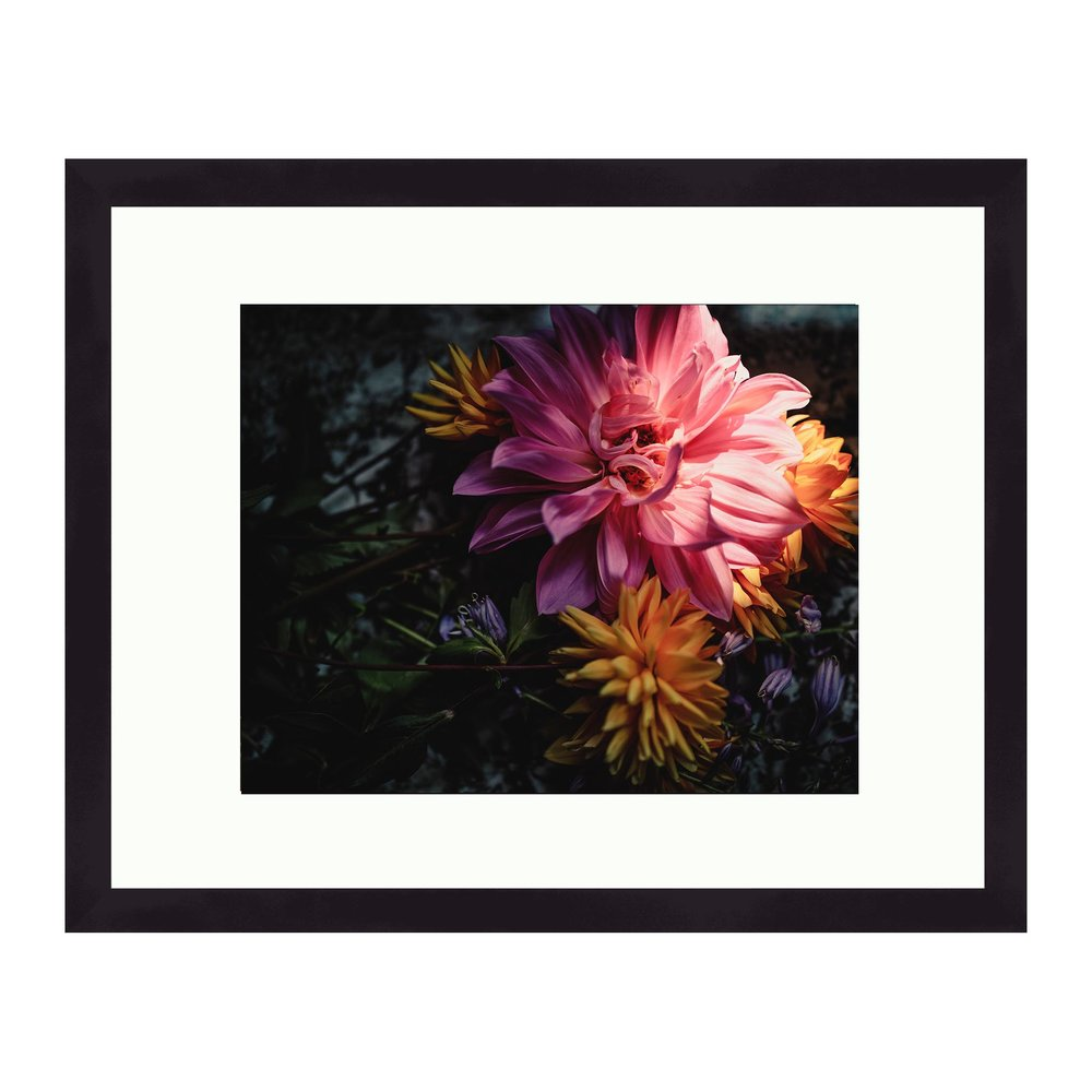 Dhalias 11x14 Frame With 8x10 Matted Print Snowflake Photography