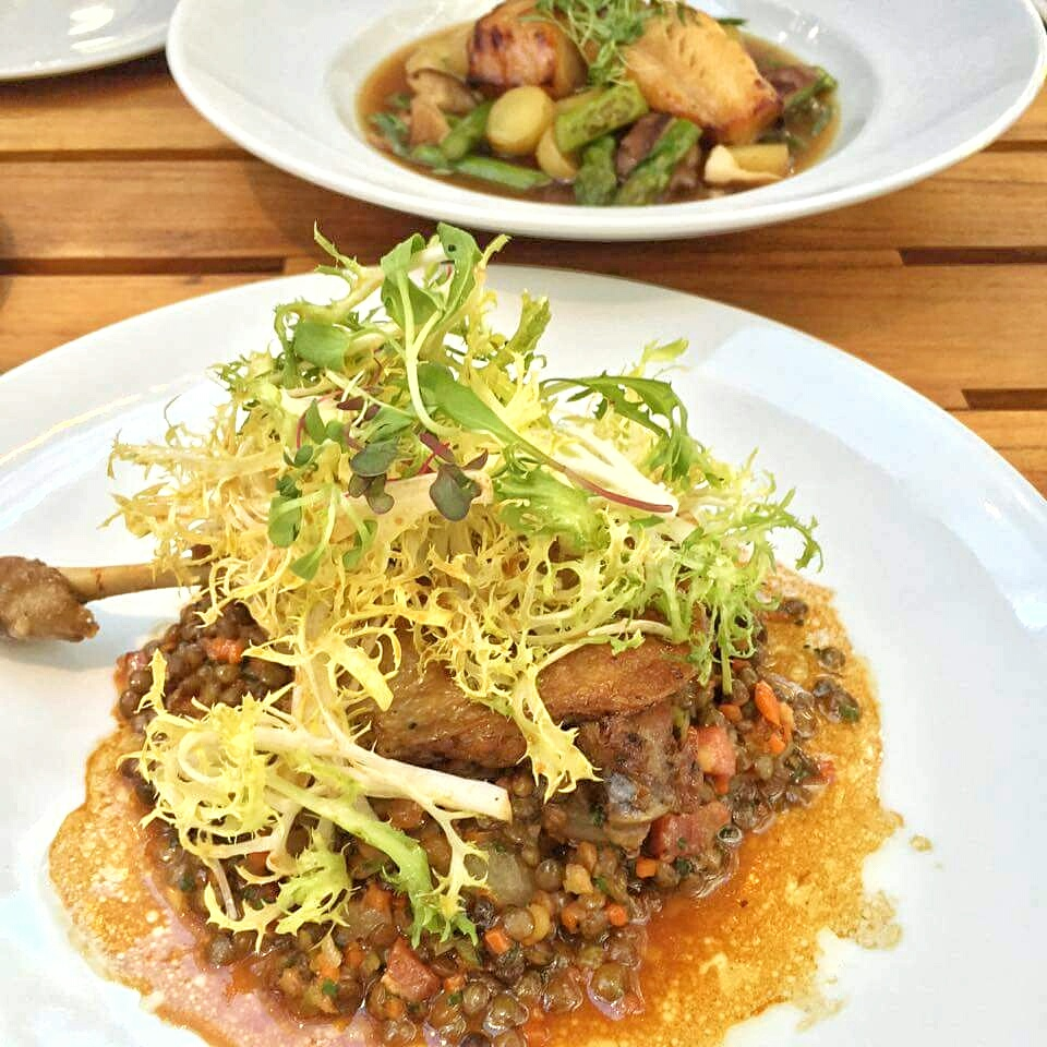 Duck Confit - braised lentils, double smoked bacon, soy - truffle vinaigrette, baby frisee salad. Cost - $26