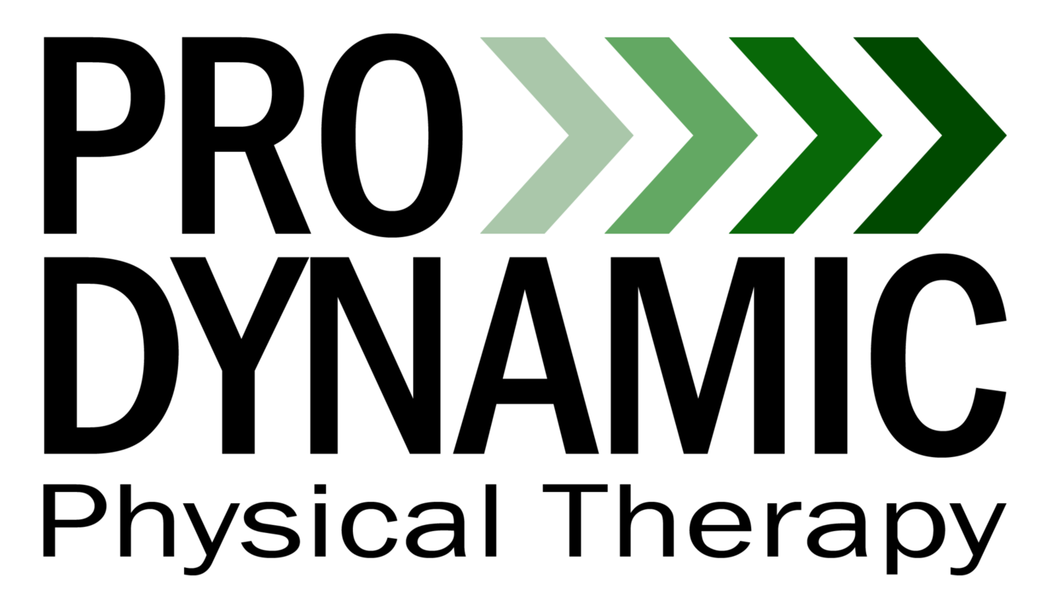 Blog — Pro Dynamic Physical Therapy Inc