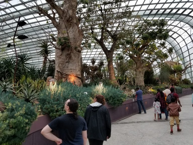Harrison and Sophia admiring the various sections. Australia, South Africa, China, American Southwest (huge cacti), California, Holland and many other areas to be explored within the dome.
