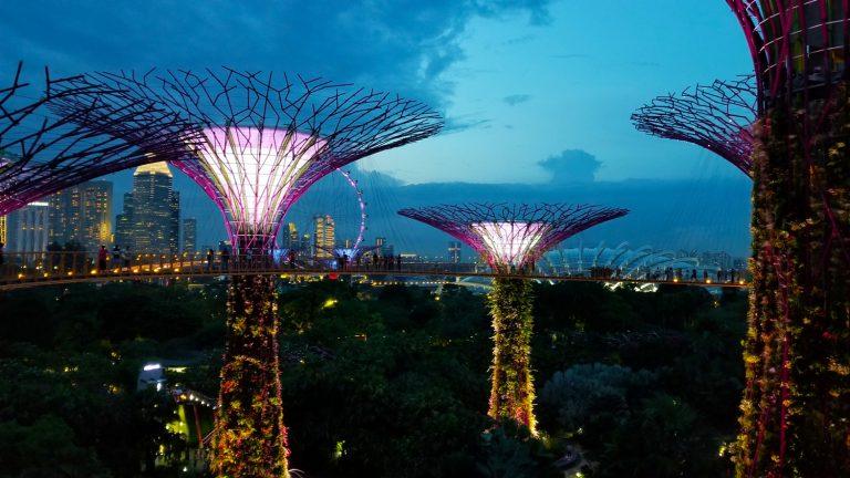 Gardens-by-the-Bay-Singapore-55-768x432.jpg
