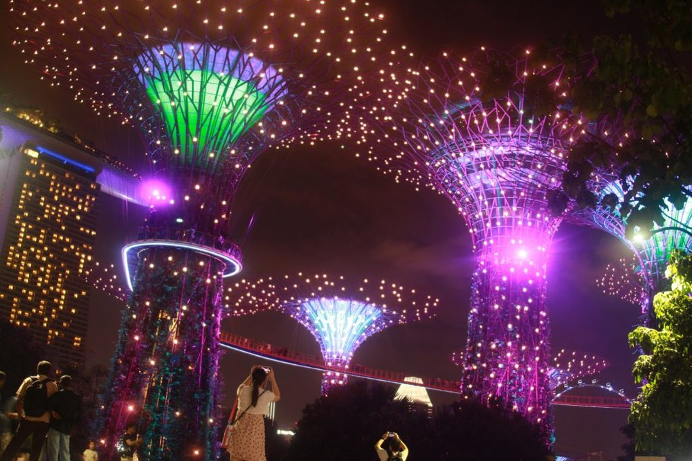Gardens-by-the-Bay-Singapore-93-1024x683.jpg